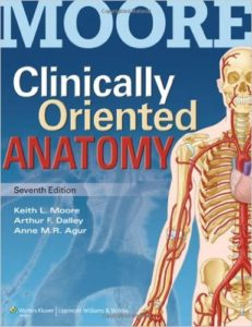 Clinically oriented Anatomy by Keith L Moore