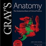 Gray's Clinical Anatomy pdf Review & Download pdf: