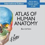 Netter Atlas Of Human Anatomy pdf Review & Download free: