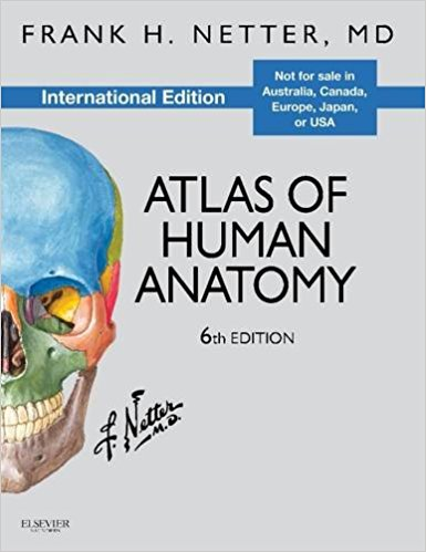 Atlas of anatomy download