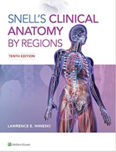Snell's Clinical Anatomy By Region 10th Edition PDF
