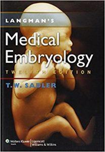 langman embryology