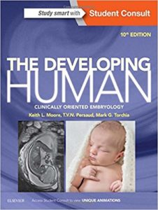 Develping human clinical oriented embryology pdf