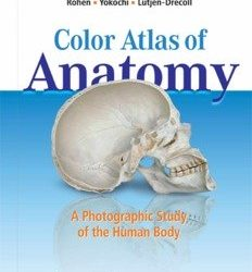 rohens atlas of anatomy