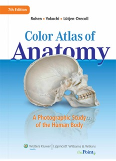 Color Atlas of Anatomy Pdf