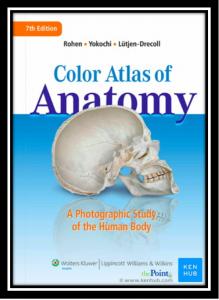 color atlas of anatomy pdf