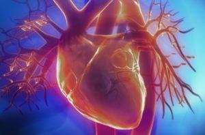 cardiovascular drugs classification
