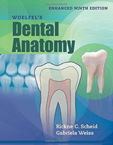 woelfel's dental anatomy 9th edition pdf