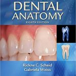 Woelfel's Dental Anatomy PDF Free Download 8Th Edition [Direct Link]: