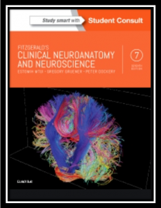 Fitzgerald clinical neuroanatomy and neuroscience pdf