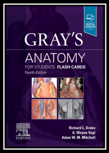 gray's anatomy for students flash card