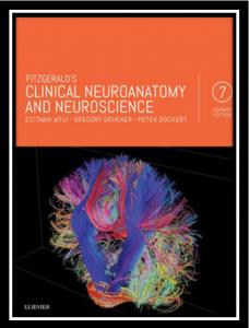 fitzgerald's clinical neuroanatomy and neuroscience pdf