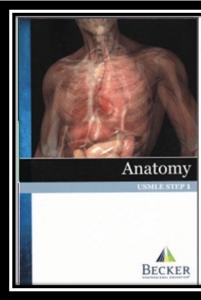 usmle step anatomy pdf