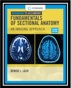 fundamentals of sectional anatomy pdf