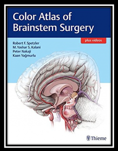 color atlas of brainstem surgery pdf