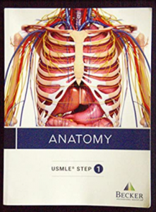 Becker usmle step 1 anatomy pdf