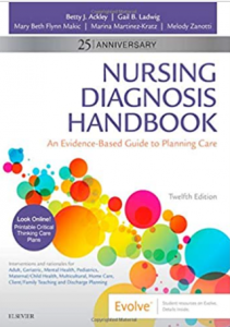 Nursing Diagnosis Handbook An Evidence-Guide to Planning Care 12th Edition PDF free