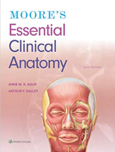 Moore's Essential Clinical Anatomy 6th Edition PDF