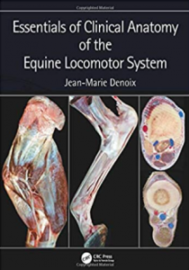 Essentials of Clinical Anatomy of the Equine Locomotor System PDF