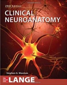 Clinical Neuroanatomy 29th Edition PDF