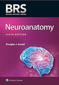 BRS Neuroanatomy 6th Edition PDF