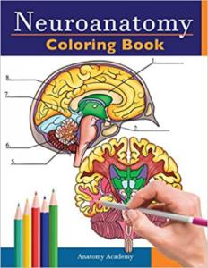 Neuroanatomy Coloring Book PDF