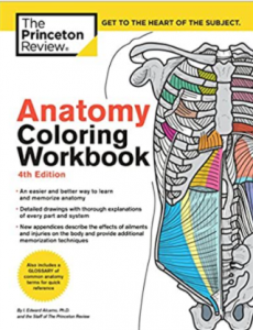 Anatomy Coloring Workbook 4th Edition PDF