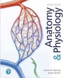 Anatomy & Physiology 7th Edition PDF