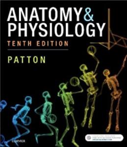 Patton Anatomy & Physiology 10th Edition PDF