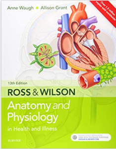 Rose & Wilson Anatomy and Physiology 13th Edition PDF