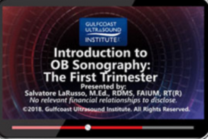 Download Gulfcoast Introduction to OB Sonography – The First Trimester Videos Free
